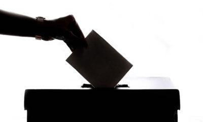 Valor del voto